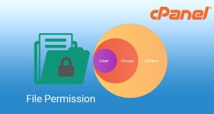 change file permission at cpanel leotheme blog