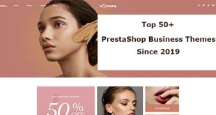 best prestashop business theme