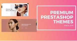 best prestashop premium themes